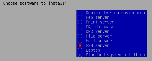 Minimum Debian package installation