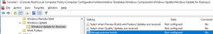 Windows10 WufB Settings